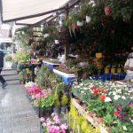 Wanita Ini Berkongsi Pengalaman Melihat Kawasan Kebun Bandar Di Turki 3